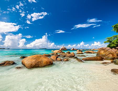 BVI公司名称规定和查询